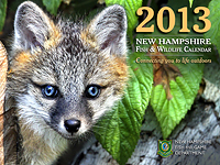 2013_Calendar_cover_thumb