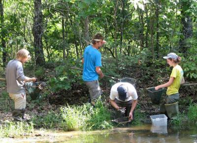 pond research chytrid